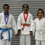 2017 Wadahachi WJI Judo Championships (6)